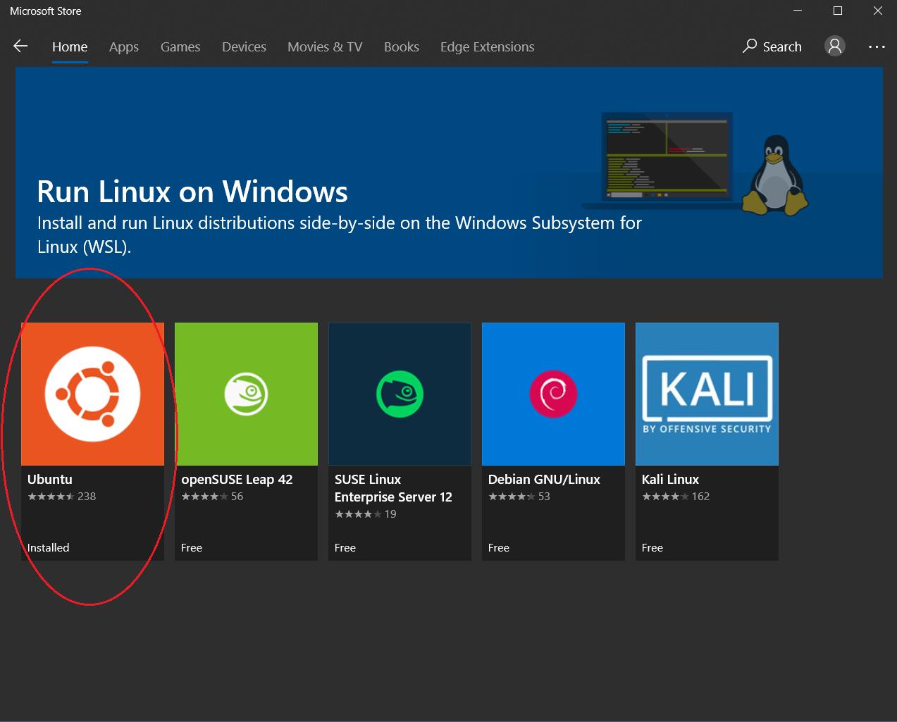 ubuntu choice in microsoft store
